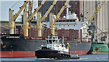"""J3576 : The tug """"Brent"""", Belfast harbour - August 2019(2) by Albert Bridge"""