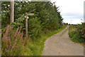 NJ8706 : Track near Fernhill, Aberdeen, Scotland by Andrew Tryon