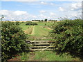 TL5306 : Gate and ditch near Ongar by Malc McDonald