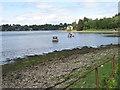 NM9436 : Loch Etive shore by M J Richardson