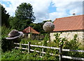SK9224 : Willow spheres outside Woolsthorpe Manor by Mat Fascione