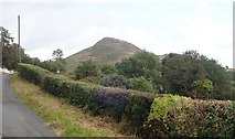 J0125 : Sugar Loaf Hill from the B134 (Mountain Road) by Eric Jones