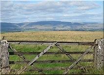 NY6511 : View through a gateway by Gordon Hatton