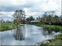 TQ0155 : River Wey above Worsfold Gates by Robin Webster