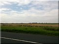 NU2033 : Field not far from Seahouses by Darrin Antrobus
