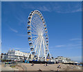 TQ1402 : Worthing Observation Wheel by Paul Gillett