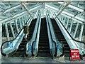 SP3379 : Escalators in the Precinct by Philip Halling