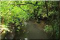 SU8346 : Channel of the north branch of the Wey near Farnham by Derek Harper