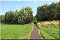 SU8346 : Path, Bishop's Meadow by Derek Harper