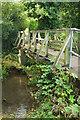 SU8346 : Footbridge over River Wey channel by Derek Harper