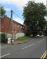 ST1594 : Dominant tree, Park Road, Hengoed by Jaggery