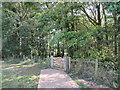 TQ3210 : Path into woodland, near Brighton by Malc McDonald