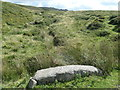 SH5056 : Spring-fed stream near Dafarn Dywarch by Christine Johnstone