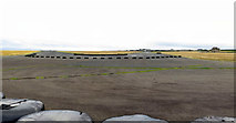 NO6209 : Runways, Crail Disused Airfield by Andrew Curtis