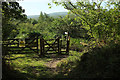 SX7780 : Permissive bridleway into Hisley Wood by Derek Harper