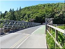 NY4624 : The temporary pontoon bridge at Pooley Bridge by Ruth Sharville