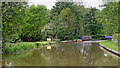 SK1509 : Coventry Canal near Huddlesford in Staffordshire by Roger  Kidd