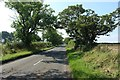 NZ2695 : Minor road between Druridge and Widdrington by Graham Robson