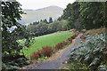NT3335 : Path from Traquair by Jim Barton