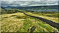 SD2896 : Coniston Water by Mick Garratt
