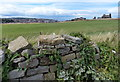 NZ9010 : Stone wall along Green Lane by Mat Fascione