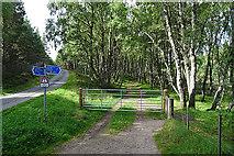 NH8721 : Start of the Sluggan Track by Anne Burgess
