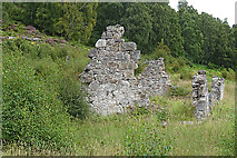 NH8622 : Over Dulnain by Anne Burgess