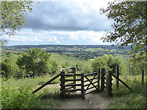 TQ5559 : View from the North Downs Way by Marathon