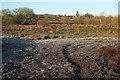 SY9484 : Marshy ground on Middlebere Heath by Derek Harper