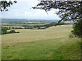 SZ5379 : View north-west from Appuldurcombe Down by Robin Webster