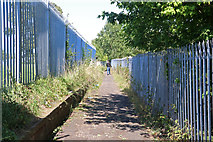 SO8555 : Footpath behind Rainbow Hill by Chris Allen
