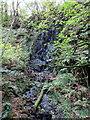 SN0534 : Tregynon waterfall by ceridwen
