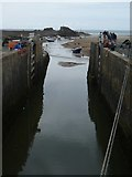 SS2006 : Bude Canal lock by David Smith