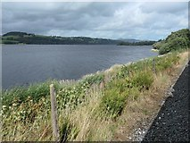 SH8931 : Llyn Tegid / Bala Lake near Ffynnongower by Christine Johnstone