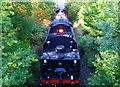 NN0777 : The Jacobite Steam Train by Bill Kasman