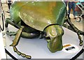 TG2208 : Big Bugs on tour - rose chafer beetle by Evelyn Simak