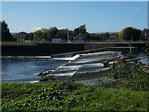 SX9291 : Trews Weir Exeter, and new fish ladder by David Smith