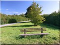 SK7668 : Bench on spare ground beside a minor road by Graham Hogg