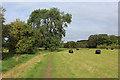 SE1048 : Dales Way near Hadfield Farm by Chris Heaton