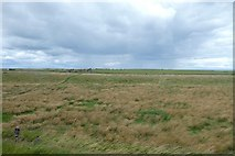 NU1341 : Grassland near the castle by DS Pugh