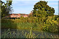 SJ6755 : Pond beside Coppenhall Lane by David Martin