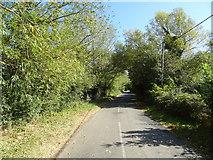 SP6517 : Piddington Road towards Ludgershall by JThomas