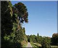 NH6855 : Driveway, Rosehaugh by Craig Wallace