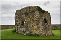 S7010 : Castles of Munster: Passage East, Waterford (2) by Mike Searle