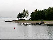NS3882 : Loch Lomond, Drumkinnon Bay by David Dixon