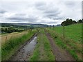 SJ9995 : Farm track at Mottram-in-Longdendale by Gerald England