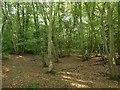 TQ7110 : Jack O'Boreham Wood by Simon Carey