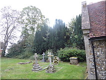 TL8530 : St Andrew, Colne Engaine: churchyard (b) by Basher Eyre