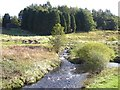 NY7876 : Confluence of the Middle Burn with the Warks Burn by Oliver Dixon