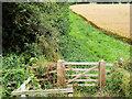SP0635 : GWSR Foot Crossing Gates, Stanton Fields by David Dixon